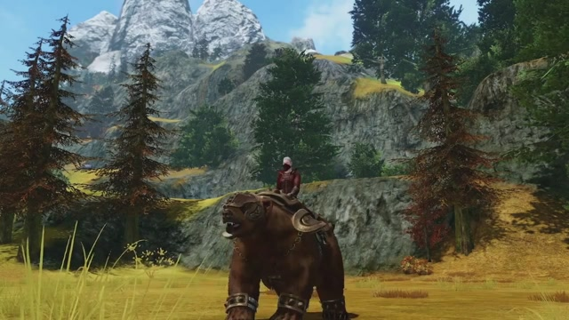 Где взять черный ездовой медведь в archeage
